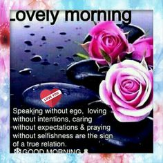 Lovely Day in the offing. Very Good Morning Images, Morning Love, Good Morning Happy, Good Morning Flowers, Good Morning Wishes, Morning Dua, Morning Greetings Quotes, Morning Messages, Morning Sayings