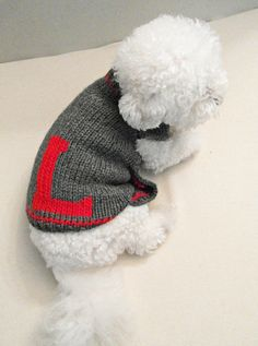 Personalized Dog Sweater. Handmade Dog Clothes. Pet Clothing.