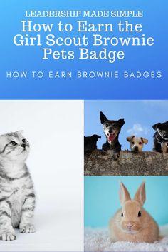 Brownie Pet Badge, Girl Scout Brownie Badges, Brownie Girl Scouts, Girl Scout Troop, Brownie Meeting Ideas, Girl Scout Daisy Activities, Brownies Activities, Cat Stroller, Cat Pillow