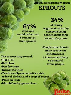 All You Need To Know About Sprouts