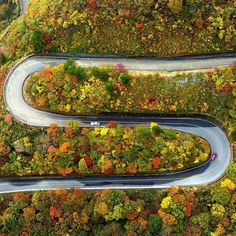 Mt. Ibuki, Shiga Pref. /海外「日本人の完璧主義は凄い」 日本のとある山道が色々と美しすぎると話題に - 【海外の反応】 パンドラの憂鬱