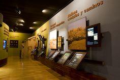 Centro de interpretación, Parque Arqueológico de Recópolis.