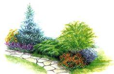 Цветущая садовая дорожка