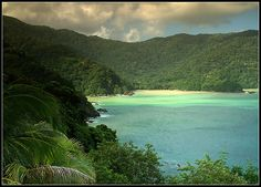Charlotteville, Tobago... we spent 6 months with our stern anchor tied to a tree.  You would wake up to the sounds of the birds in the rainforest, and hear the roar of the rain coming across the tree's.  Heaven !