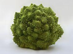 ロマネスコ(伊: Broccolo Romanesco)はアブラナ科アブラナ属の一年生植物。カリフラワーの一種である[1]。フラクタル形態の花蕾が特徴の野菜である。