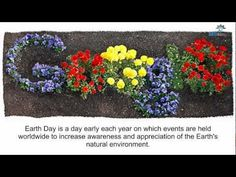 EARTH DAY GOOGLE DOODLE: Blooming logo celebrates global campaign for environment