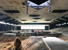 Pierre Huyghe, After Alive Ahead, 2017. In a former ice rink on Steinfurterstraße for Skukptur Projekte Münster, open June 10 through Oct. 1 @sp_muenster #skulpturprojektemünster #pierrehuyghe