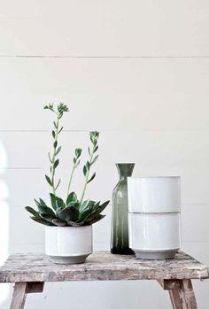 white ceramics and green blue plants.