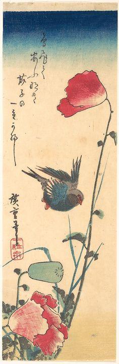 Bluebird and Flowering Poppies  Utagawa Hiroshige  (Japanese, 1797–1858)