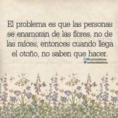 El problema es que las personas se enamoran de las flores, no de las raíces, entonces cuando llega el otoño ya no sabes que hacer.