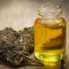 Want to buy cbd oil online? Our goal is inform you about what to look out for to make an educated decision on hemp extracts and cannabis oil for sale. Cannabis News, Cannabis Plant, Endocannabinoid System, Natural News, Cbd Oil For Sale, Cbd Hemp Oil, Oil Benefits, Beauty Products, Ganja