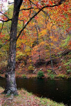 """Lake Chinnabee"" Talladega National Forest, Alabama"