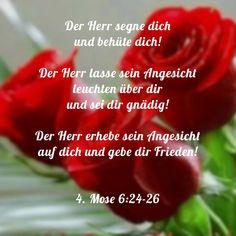 Bible Teachings, Word Of God, Faith, Words, Rose, Prayers, Gods Love, Blessing, Peace