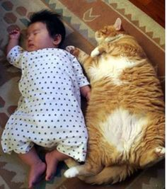 Animals Prove They Are The Best Babysitters Around