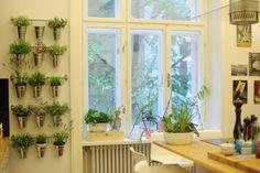 Journelles Maison: Das schönste Wien-Apartment zur Miete - Journelles