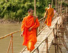 Povestire cu doi călugări zen - Vrajitoare România, Cele mai mediatizate vrăjitoare.