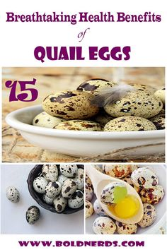 Breathtaking benefits of quail eggs benefits Are Quail Eggs Good for You? 15 Amazing Benefits of Eating Quail Eggs Quail Eggs Benefits, Health Benefits Of Eggs, Healthy Egg Recipes, Whole Food Recipes, Healthy Foods, Healthy Life, Healthy Eating, Clean Eating For Beginners, Healthy Food To Lose Weight
