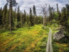 Suolla sielu lepää minä en. . . . . . . . #europe #instafinland #ruka #travel #traveler #traveling #travelgram #finnishboy #landscape #landscape_lovers #finnish #travelphotography #instatravel #instapic #instagramers #visitfinland #thisisfinland #discoverfinland #nature #hiking #follow #followme #finnishmoments#lovelyfinland #thebestoffinland #nature #instarunners #trailrunning #beautyofsuomi #fitness