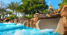 The 8 Things We Love About Typhoon Lagoon