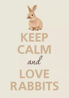 Keep calm, and LOVE Rabbits! ! !