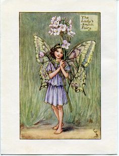 Lady's-Smock Flower Fairy Vintage Print, c.1927 Cicely Mary Barker Book Plate Illustration by TheOldMapShop on Etsy
