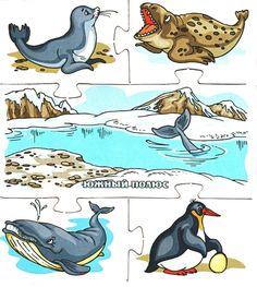 zvířata z přírody