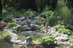 pond ideas - Google-haku