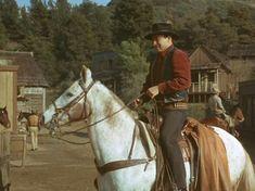 James Drury, Actor James, The Virginian, Hazel Eyes, All Smiles, Westerns, Hair Cuts, It Cast, Handsome