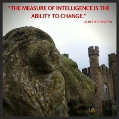 How does your IQ relate to your EIQ?