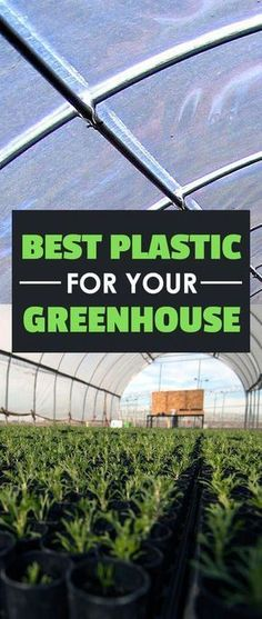 Get inspired ideas for your greenhouse. Build a cold-frame greenhouse. A cold-frame greenhouse is small but effective. Greenhouse Film, Diy Greenhouse Plans, Greenhouse Farming, Outdoor Greenhouse, Backyard Greenhouse, Small Greenhouse, Greenhouse Wedding, Homemade Greenhouse, Greenhouse Cover