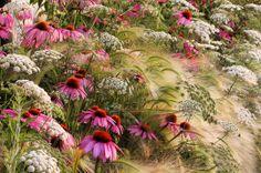 Les plus belles photos de jardin du concours IGPOTY - CôtéMaison.fr Tout simplement magnifique, à regarder absolument pour vous donner le :-) en ce début de week end.
