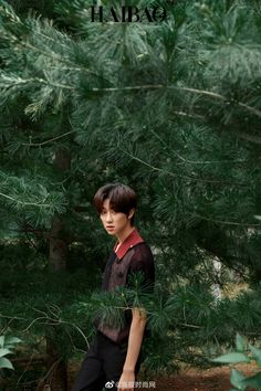 """""""u go on a hike & u meet a tiny woodland fairy who likes to play with the dewdrops on leaves and put flowers in his hair. Woozi, Wonwoo, Jeonghan, Seungkwan, Seventeen Performance Team, Seventeen Debut, Vernon, Seventeen Minghao, Hip Hop"""