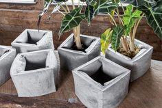 IN.SEK Design's Fatty Planters