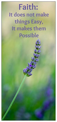 Keeping Faith during Infertility Treatment Causes Of Infertility, Infertility Treatment, Pregnant At 40, Getting Pregnant, Stronger Than You Think, Good Wife, Pcos, Laughter, How To Become