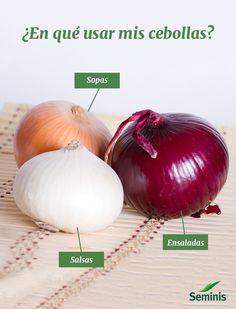 Descubre qué te conviene preparar con cada variedad de #cebolla.