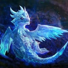 Baby Ice Dragon | wahneta follis s photos
