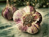 Miraculous Potion of Garlic: Protects Against Infectious Diseases, Purifies the Blood and Keeps the Heart Healthy - Healthy Life Vision Garlic Health Benefits, Black Garlic, Raw Garlic, Natural Kitchen, Kraut, Natural Living, Vitamin C, Beauty Secrets, Beauty Tips