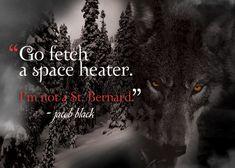 """Go fetch a space heater. I'm not a St. Bernard."" - Jacob Black"