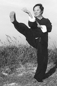 Grand Master Wong Shun Leung Demonstrating a Wing Chun Front Kick.