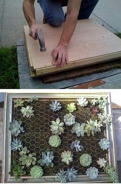 Plant wall: tips and inspiring photos to create it yourself! Succulent Frame, Vertical Succulent Gardens, Succulent Gardening, Succulents Garden, Succulent Wall Planter, Vertical Garden Diy, Diy Garden Projects, Garden Crafts, Garden Deco