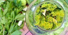 Cum se pun la murat castraveţii pentru vară | Paradis Verde Hungarian Recipes, Puns, Pickles, Herbs, Canning, Food, Clean Puns, Word Games, Home Canning
