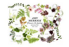 Amy Merrick