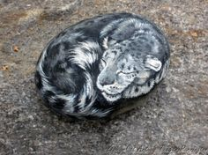 Snow leopard painted on a rock.