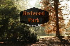 Looking for a place to explore with the kids in Surrey, BC? I'd highly suggest Redwood Park. They'll be entertained for hours!