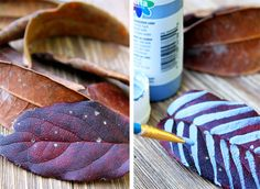 Veja como fazer um artesanato bacana com folhas do inverno
