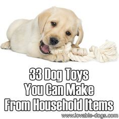 33 Dog Toys You Can Make From Household Items ►► http://lovable-dogs.com/33-dog-toys-you-can-make-from-household-items/?i=p