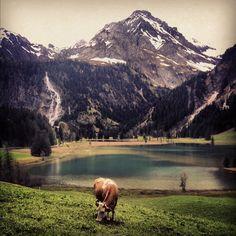 Gstaad, Switzerland - new favorite place  <3