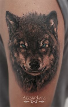 Tattoo By: Alvaro Lara Realistic Wolf  Black & Gray Tattoo