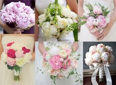 Delicate peonies for bridal bouquet