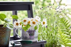 Využijte hrnečky jako obaly na květiny. Pokud zvolíte větší velikost, získáte zajímavý doplněk interiéru dokonale ladící s květinou.